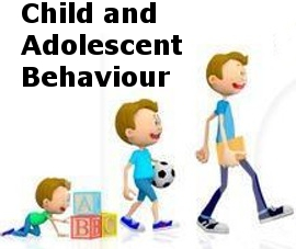 Child and Adolescent Behavior Services